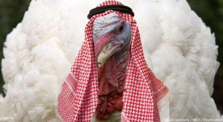 IslamicTurkey