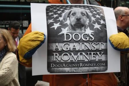232631-dogs-against-romney