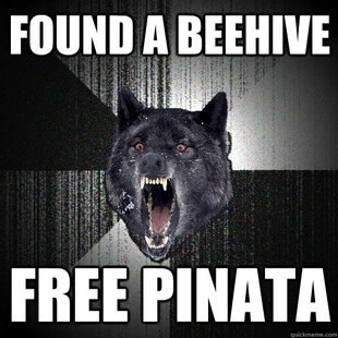 Freepinata