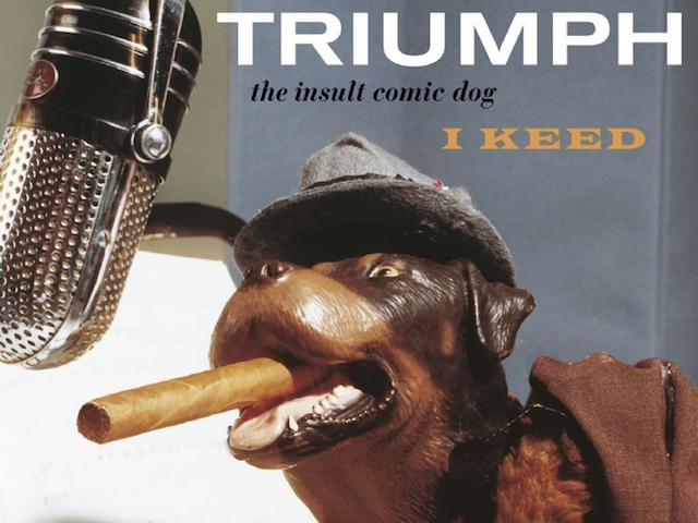 triumphtheinsultcomicdog