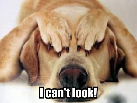 DogCantLook