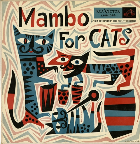 MAMBO-FOR-CATS