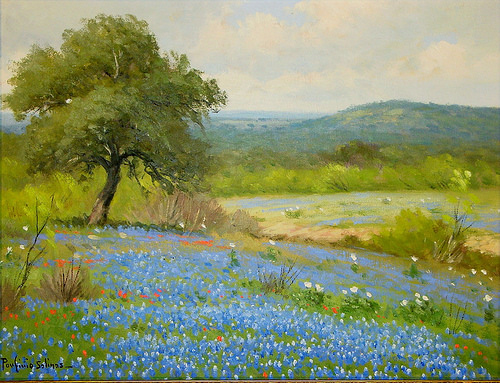 Texas Bluebonnets by Porfirio Salinas.