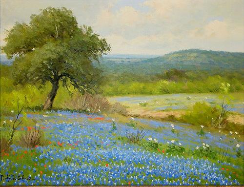 Texas Bluebonnets by Porfirio Salinas.