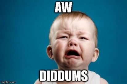 Diddums
